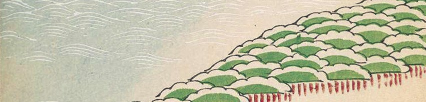 Grenouille Zen Shiatsu et Sophrologie à Paris
